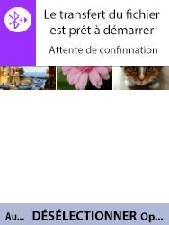 Alcatel 3088X - Photos, vidéos, musique - Envoyer une photo via Bluetooth - Étape 15