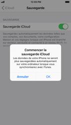 Apple iPhone 7 - iOS 12 - Données - Créer une sauvegarde avec votre compte - Étape 11