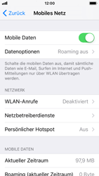 Apple iPhone SE - Netzwerk - Netzwerkeinstellungen ändern - 0 / 0
