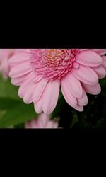 Samsung Wave 2 - Photos, vidéos, musique - Prendre une photo - Étape 10