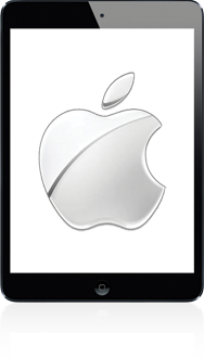 Apple ipad-mini-retina-met-ios-11-model-a1490