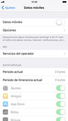 Apple iPhone 6s - iOS 11 - Internet - Activar o desactivar la conexión de datos - Paso 5