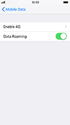 Apple iPhone 5s - iOS 12 - Internet - Disable data roaming - Step 5