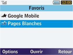 Samsung S3570 Chat 357 - Internet - Navigation sur Internet - Étape 14