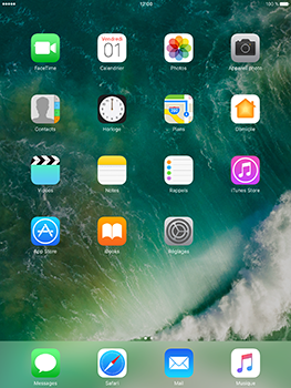 Apple iPad mini 4 iOS 10 - Internet - configuration manuelle - Étape 1