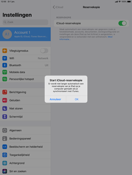 Apple iPad Air (2019) - iPadOS 13 - Data - maak een back-up met je account - Stap 11