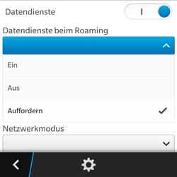 BlackBerry Q5 - Ausland - Auslandskosten vermeiden - 9 / 10