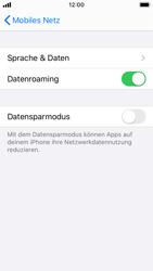 Apple iPhone SE - iOS 13 - Ausland - Im Ausland surfen – Datenroaming - Schritt 8