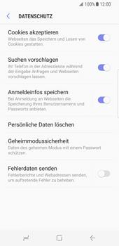 Samsung Galaxy S8 - Datenschutz und Sicherheit - Datenschutzeinstellungen des Browsers ändern - 9 / 18