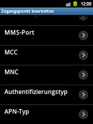 Samsung Galaxy Y - Internet und Datenroaming - Manuelle Konfiguration - Schritt 13