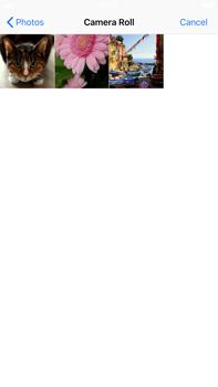 Apple iPhone 8 Plus - iOS 12 - MMS - Sending pictures - Step 10