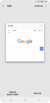 Samsung Galaxy S9 Plus - Internet - Internet browsing - Step 16