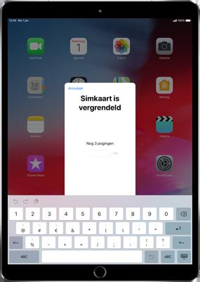 Apple ipad-pro-11-inch-2018-model-a1934 - Instellingen aanpassen - Activeer het toestel en herstel jouw iCloud-data - Stap 31