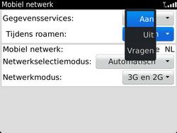 BlackBerry 9900 Bold Touch - Internet - Internet gebruiken in het buitenland - Stap 8