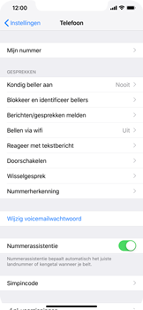 Apple iphone-xr-met-ios-12-model-a1984 - Bellen - WiFi Bellen (VoWiFi) - Stap 4