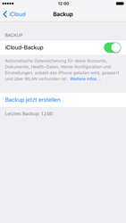 Apple iPhone 7 - Software - iCloud synchronisieren - 8 / 9