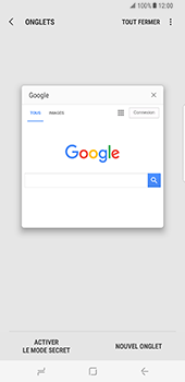 Samsung Galaxy S8 Plus - Internet - Navigation sur Internet - Étape 17