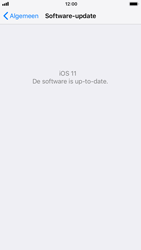 Apple iPhone 6 - iOS 11 - software - update installeren zonder pc - stap 6