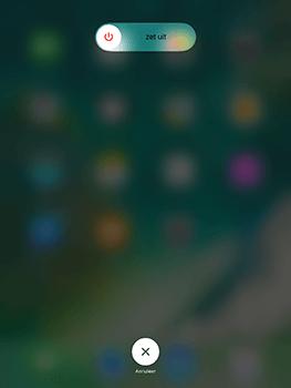 Apple iPad 9.7 (Model A1823) - Internet - Handmatig instellen - Stap 11