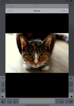Apple ipad-pro-11-inch-2018-model-a1934- ipados-13 - E-mail - Hoe te versturen - Stap 13
