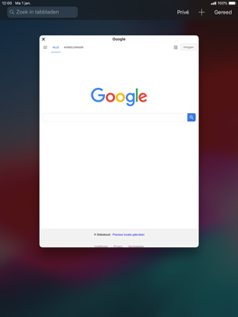 Apple iPad mini 4 iOS 12 - Internet - Internetten - Stap 14