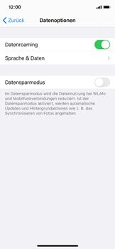 Apple iPhone X - iOS 14 - Internet und Datenroaming - Deaktivieren von Datenroaming - Schritt 5