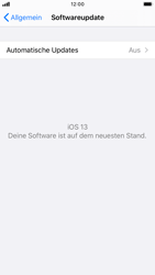 Apple iPhone 8 - iOS 13 - Software - Installieren von Software-Updates - Schritt 6