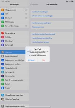 Apple iPad Pro 11 inch 2nd generation (2020) (Model A2230) - Instellingen aanpassen - Fabrieksinstellingen terugzetten - Stap 7