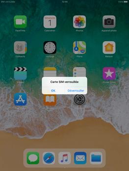 Apple iPad Air iOS 11 - Internet et roaming de données - Configuration manuelle - Étape 14