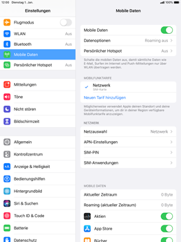 Apple iPad mini (2019) - iPadOS 13 - Internet und Datenroaming - Manuelle Konfiguration - Schritt 4
