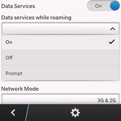 BlackBerry Q10 - Internet and data roaming - Disabling data roaming - Step 7