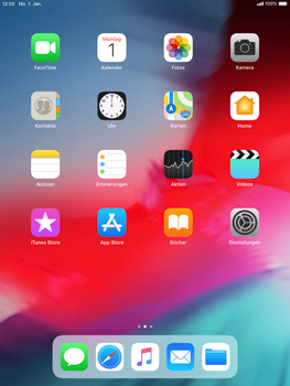 Apple iPad Mini 3 - iOS 12 - Software - Update - Schritt 1