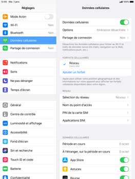 Apple iPad mini (2019) - iPadOS 13 - Internet - Configuration manuelle - Étape 5
