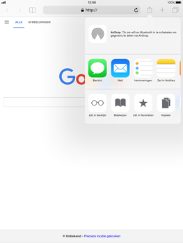 Apple iPad Air iOS 11 - Internet - internetten - Stap 5