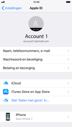 Apple iPhone 6 - iOS 11 - toestel resetten - back-up maken met jouw account - stap 8