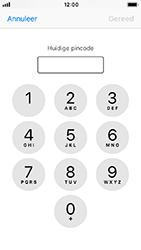 Apple iphone-se-met-ios-12-model-a1723 - Beveiliging en ouderlijk toezicht - Hoe wijzig ik mijn SIM PIN-code - Stap 6