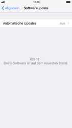 Apple iPhone 8 - iOS 12 - Software - Installieren von Software-Updates - Schritt 8