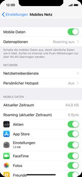 Apple iPhone X - Internet und Datenroaming - Prüfen, ob Datenkonnektivität aktiviert ist - Schritt 5