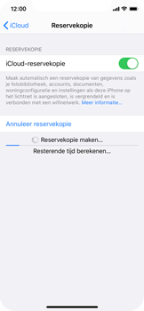 Apple iPhone X - iOS 13 - toestel resetten - back-up maken met jouw account - stap 15