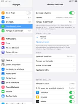 Apple iPad 9.7 (2018) - iPadOS 13 - Prise en main - Comment activer un code SIM - Étape 4