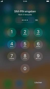 Apple iPhone 6 Plus - iOS 11 - Persönliche Einstellungen von einem alten iPhone übertragen - 30 / 31