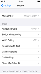 Apple iPhone SE - iOS 13 - WiFi - Enable WiFi Calling - Step 5