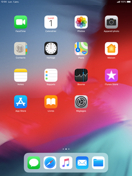 Apple iPad Air iOS 12 - Wifi - configuration manuelle - Étape 1