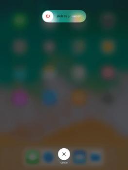 Apple iPad Air 2 - iOS 11 - Internet - Manual configuration - Step 11