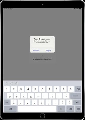 Apple ipad-pro-9-7-ios-12 - Instellingen aanpassen - Hoe gebruik ik de Automatisch inloggen-optie - Stap 13