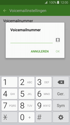 Samsung J320 Galaxy J3 (2016) - Voicemail - Handmatig instellen - Stap 8
