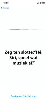Apple iphone-11-model-a2221 - Instellingen aanpassen - Nieuw toestel instellen - Stap 42