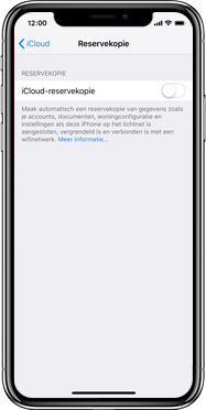 Apple iPad Pro 12.9 inch 4th generation (2020) (Model A2232) - Instellingen aanpassen - Back-up maken in je account - Stap 11