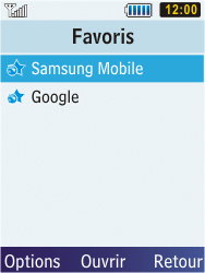 Samsung C3350 Xcover 2 - Internet - Navigation sur Internet - Étape 10