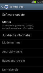 Samsung Galaxy S III Mini - software - update installeren zonder pc - stap 5